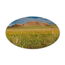 landscape at Tsondab Valley Desert Oval Car Magnet