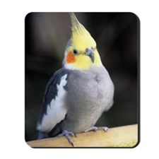 Cockatiel Mousepad