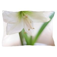 Amaryllis Pillow Case