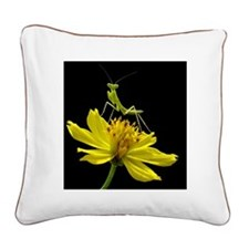 Insect Square Canvas Pillow