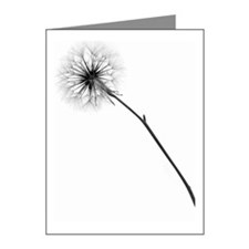 Monochrome Dandelion Note Cards (Pk of 10)