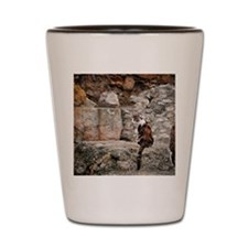 Feral cat and Roman ruins Shot Glass