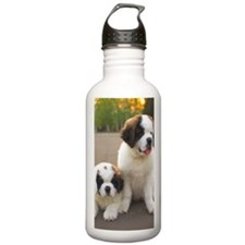 Saint Bernard puppies Sports Water Bottle