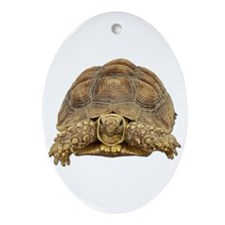 Tortoise Photo Oval Ornament