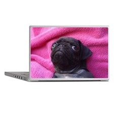 Black pug puppy Laptop Skins