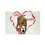 Cute Bullmastiff Rectangle Magnet (10 pack)