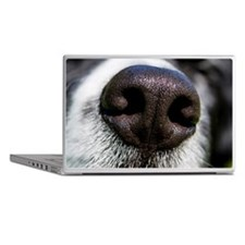 Wet nose Laptop Skins