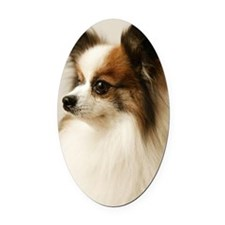 Papillon Oval Car Magnet