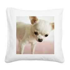 Chihuahua Square Canvas Pillow