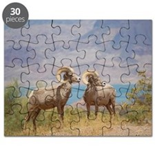 Bighorn Sheep Puzzle