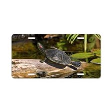 Red Eared Slider turtle sun Aluminum License Plate