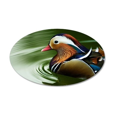 Mandarin duck swimming 35x21 Oval Wall Decal