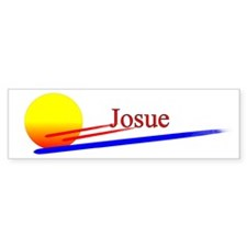 Josue Bumper Car Sticker