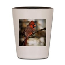 Male northern cardinal Shot Glass
