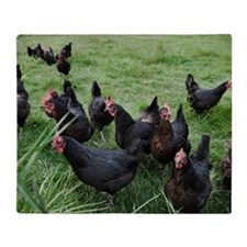 a group of black roosters Throw Blanket