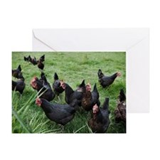 a group of black roosters Greeting Card