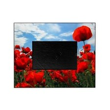 Red poppy flowers field Picture Frame