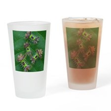 Saddleback caterpillars 0n leaf Drinking Glass