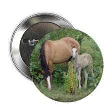 "Mare  Foal 2.25"" Button"