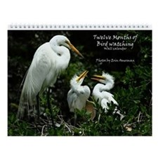 Twelve Months Of Bird Watching Calendar - New!