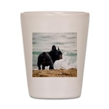 French bulldog Shot Glass