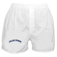 Italian Spinone (blue) Boxer Shorts