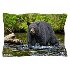 Black cear Pillow Case