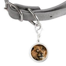 Portrait of male lion Small Round Pet Tag