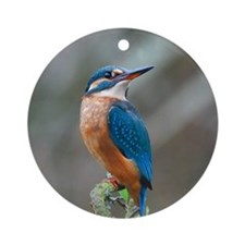 Female Kingfisher Round Ornament