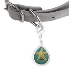 Starfish Small Teardrop Pet Tag