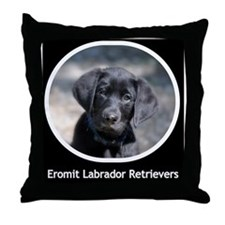 Eromit Labs Victor Throw Pillow