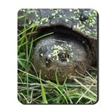 Snapping Turtle Mousepad