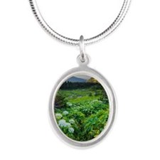 , Silver Oval Necklace