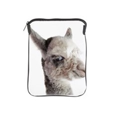 Alpaca baby studio headshot iPad Sleeve