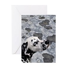Blue-eyed spot Greeting Card