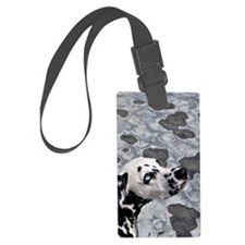 Blue-eyed spot Luggage Tag