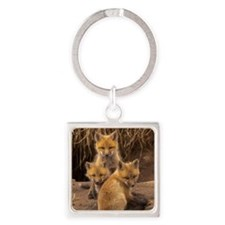 Fox kits Square Keychain