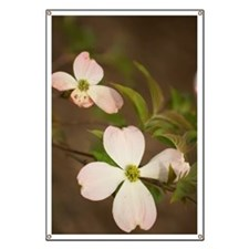 A Repetition of Light Pink Dogwood Flowers Banner