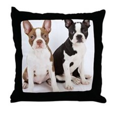 Portrait of Boston Terrier Puppies Throw Pillow
