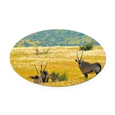 Oryxes Oval Car Magnet