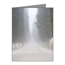 Cypress Pines in the fog, Fr Note Cards (Pk of 10)