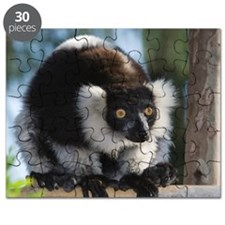 Black-and-White Ruffed Lemur Puzzle