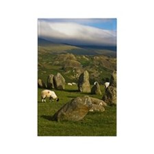 Sheeps of Castlerigg Stone Circle Rectangle Magnet