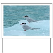 Arctic Terns Yard Sign