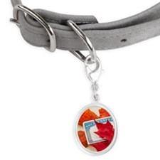 Social security card and autumn Small Oval Pet Tag