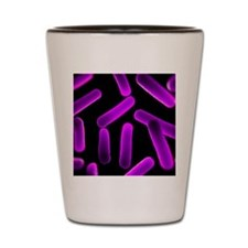 Bacteria, conceptual artwork Shot Glass