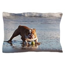English Bulldog playing with yellow te Pillow Case