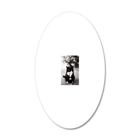 Portrait of Grumpy cat 20x12 Oval Wall Decal