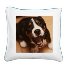 Greater swiss mountain dog Square Canvas Pillow