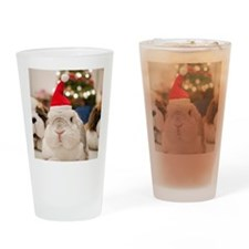 Chinese bunny rabbit Drinking Glass